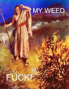 my-weed-fuck